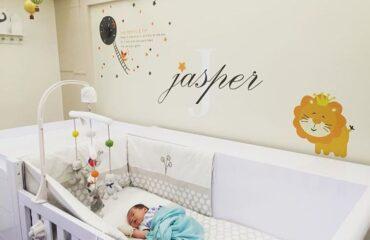10 Trendiest Gray Baby Room